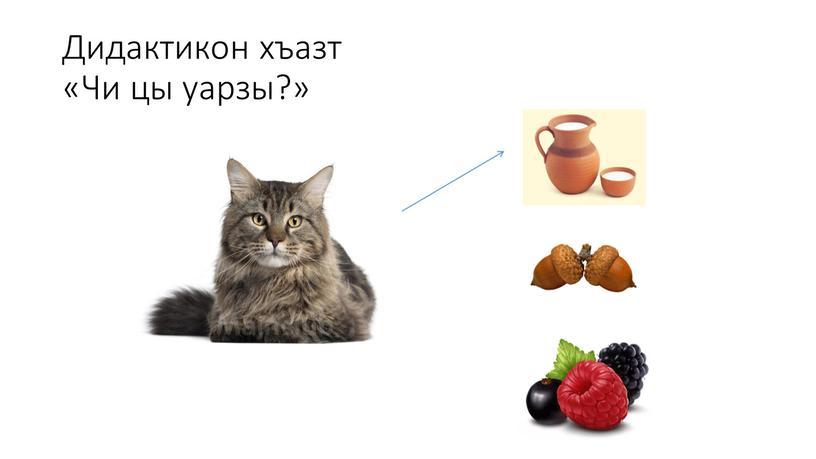 Дидактикон хъазт «Чи цы уарзы?»