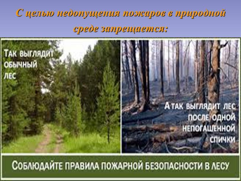 С целью недопущения пожаров в природной среде запрещается: