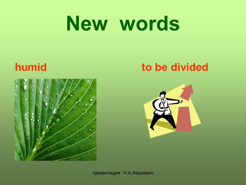 Н.А.Федкевич New words humid to be divided