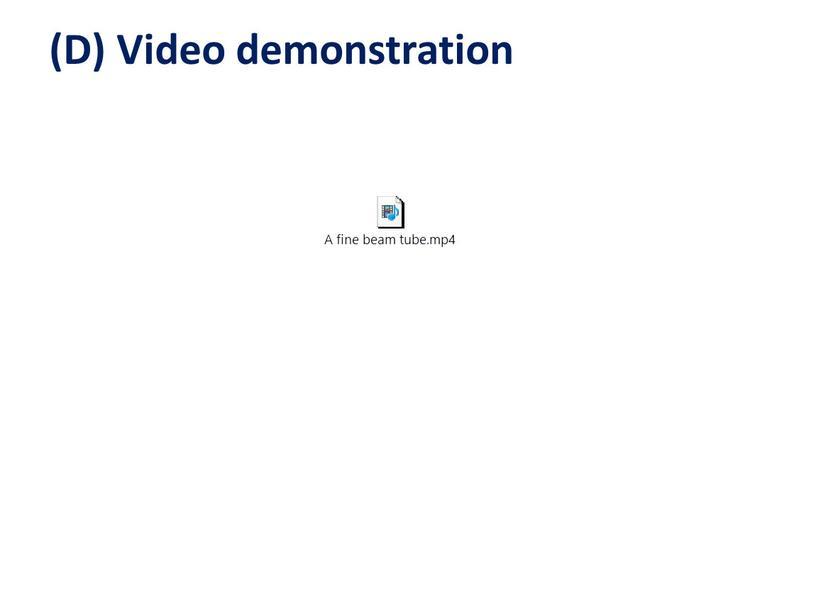 (D) Video demonstration