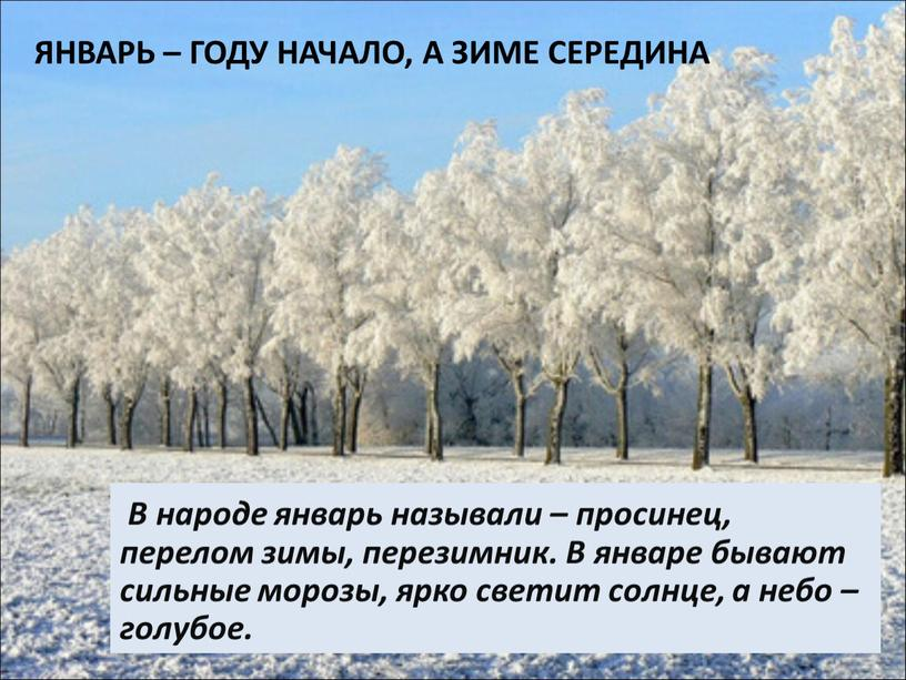 Январь – году начало, а зиме середина