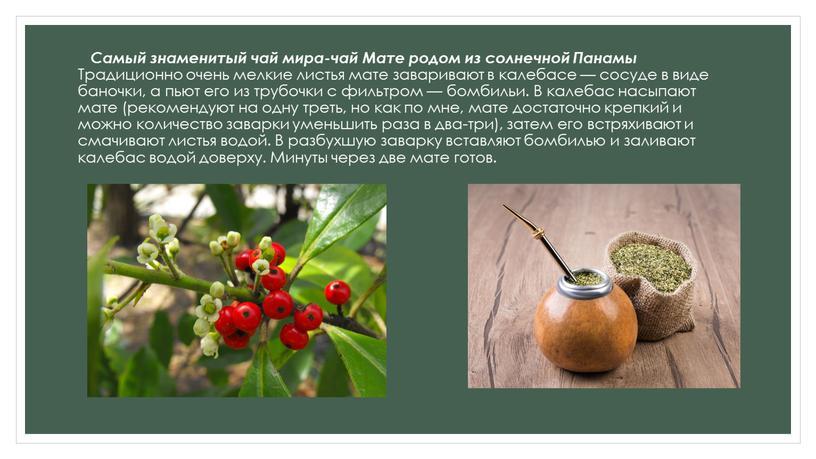 Самый знаменитый чай мира-чай Мате родом из солнечной