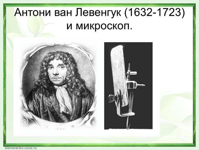 Антони ван Левенгук (1632-1723) и микроскоп