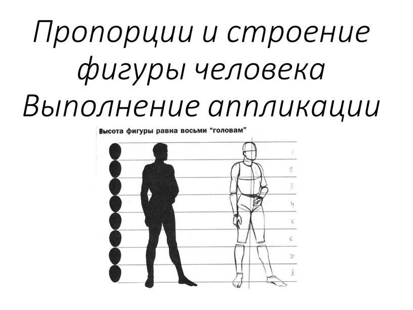 Пропорции и строение фигуры человека