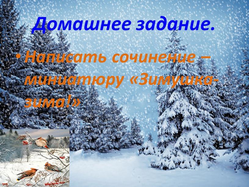 Домашнее задание. Написать сочинение –миниатюру «Зимушка- зима!»