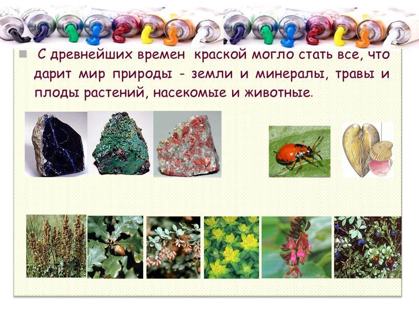С древнейших времен краской могло стать все, что дарит мир природы - земли и минералы, травы и плоды растений, насекомые и животные