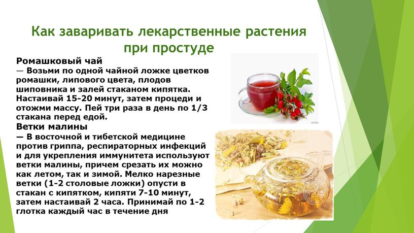 Как заваривать лекарственные растения при простуде