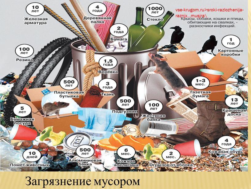 vse-krugom.ru>sroki-razlozhenija-raznjx…musjra\ Загрязнение мусором