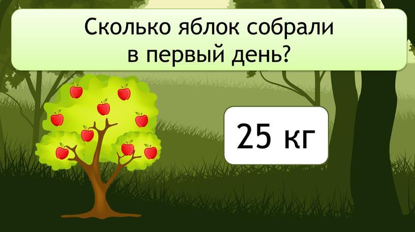 Сколько яблок собрали в первый день? 25 кг