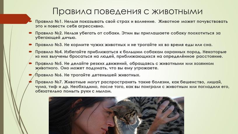 Правила поведения с животными Правило №1