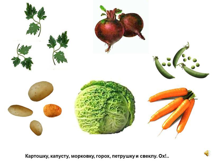 Картошку, капусту, морковку, горох, петрушку и свеклу