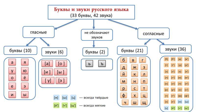 Буквы и звуки русского языка (33 буквы, 42 звука) гласные не обозначают звуков согласные буквы (10) звуки (6) звуки (36) буквы (21) буквы (2) я…
