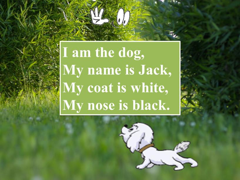 I am the dog, My name is Jack,
