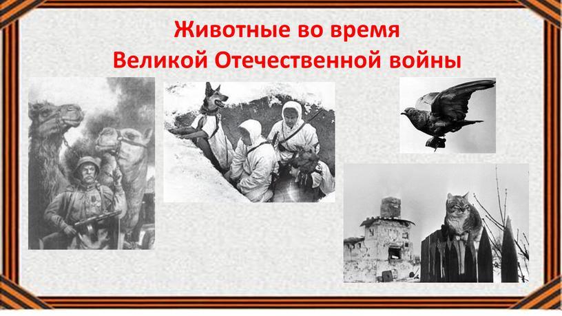 Животные во время Великой Отечественной войны