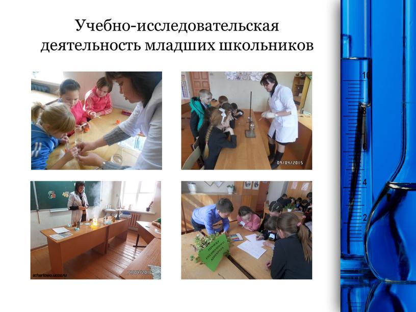Учебно-исследовательская деятельность младших школьников