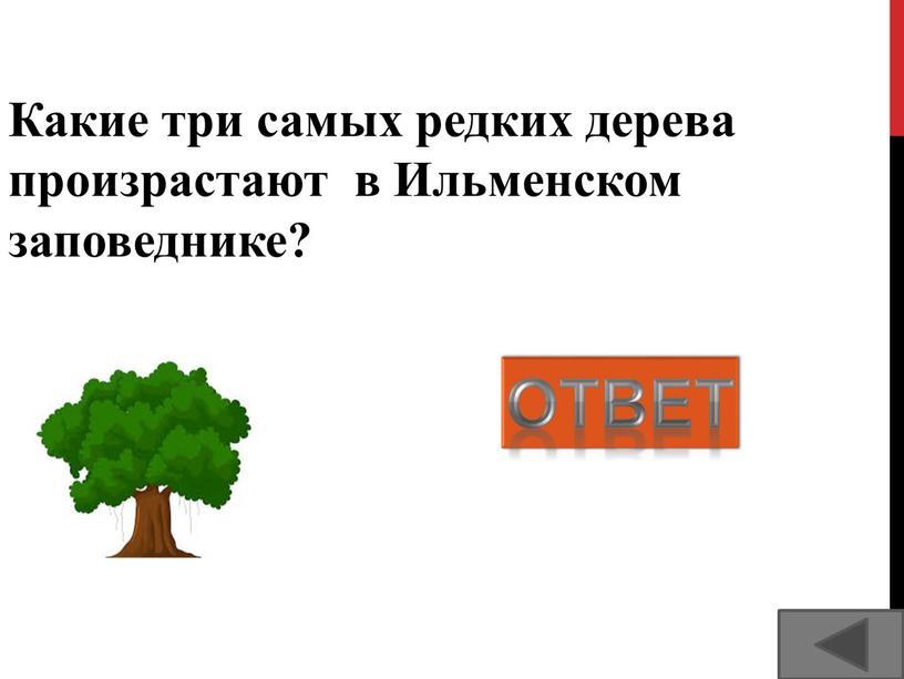 Какие три самых редких дерева произрастают в