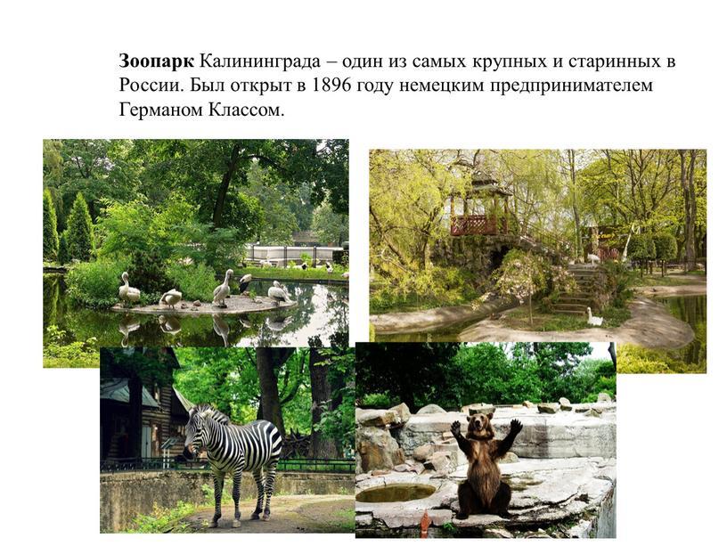 Зоопарк Калининграда – один из самых крупных и старинных в