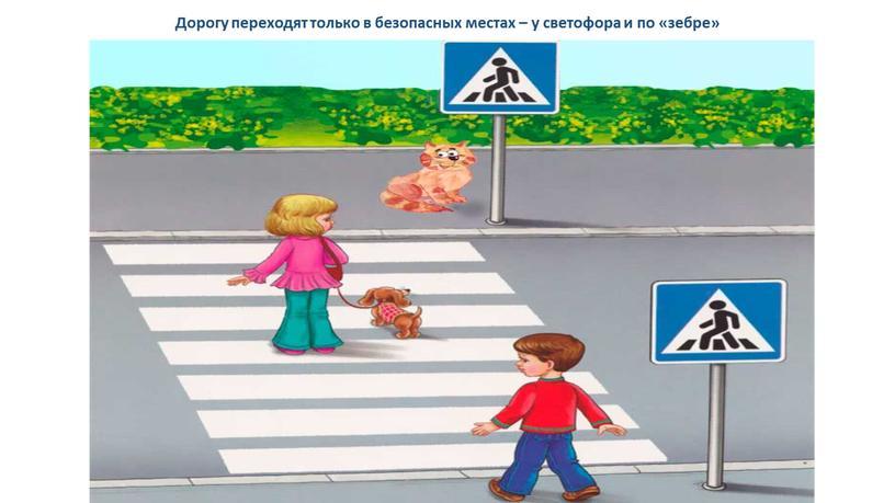 Дорогу переходят только в безопасных местах – у светофора и по «зебре»