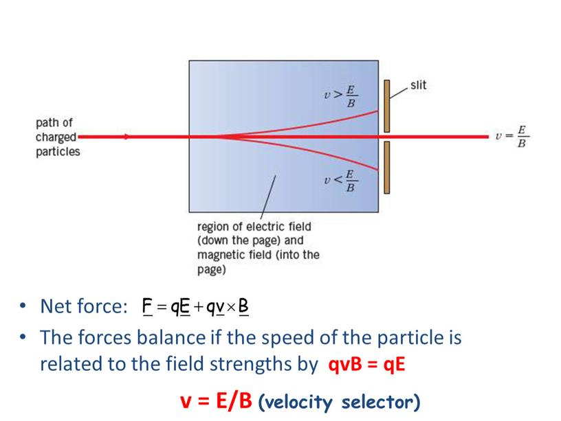 Net force: The forces balance if the speed of the particle is related to the field strengths by qvB = qE v =