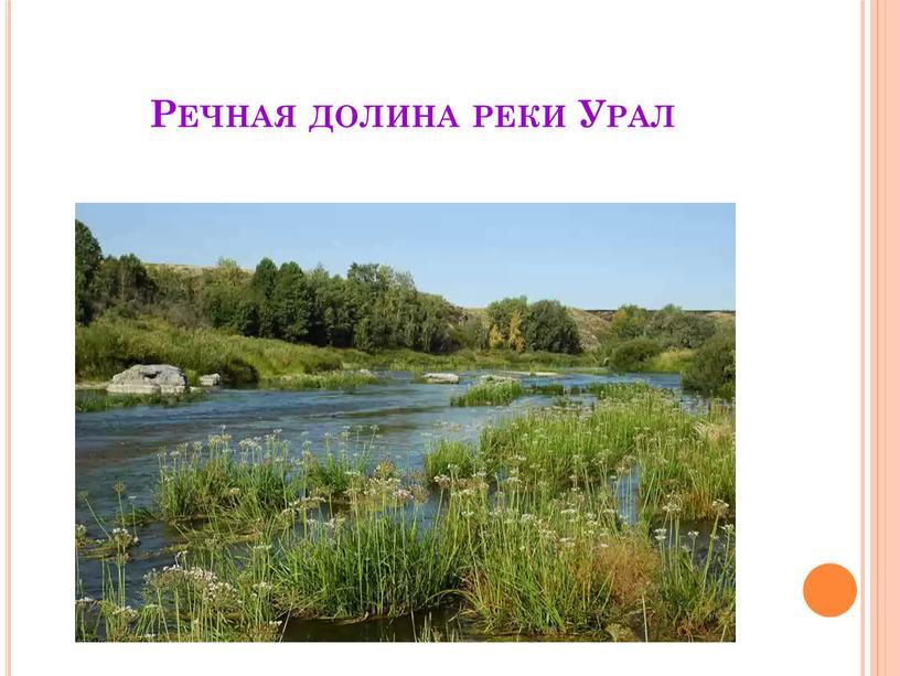 Речная долина реки Урал