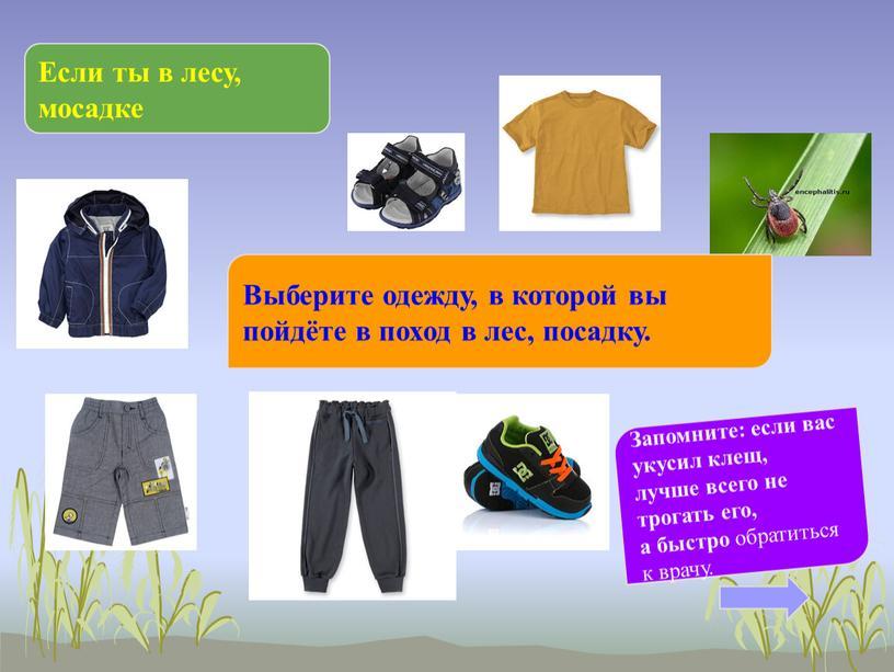 Если ты в лесу, мосадке Выберите одежду, в которой вы пойдёте в поход в лес, посадку