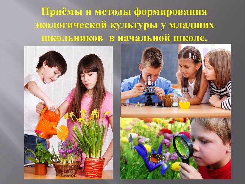 Приёмы и методы формирования экологической культуры у младших школьников в начальной школе