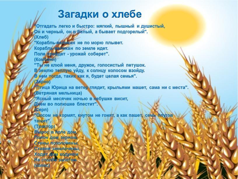 """Загадки о хлебе """"Отгадать легко и быстро: мягкий, пышный и душистый,"""