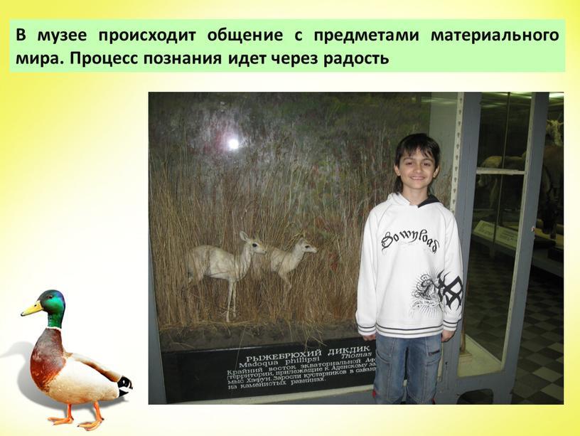 В музее происходит общение с предметами материального мира