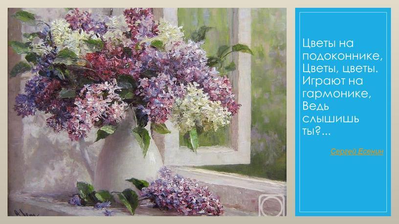Цветы на подоконнике, Цветы, цветы