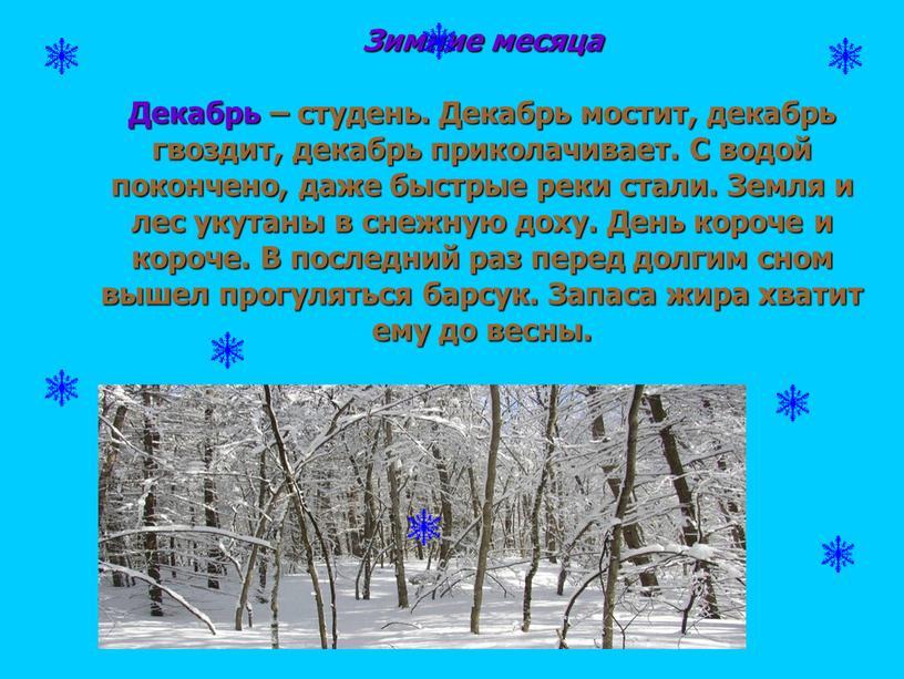 Зимние месяца Декабрь – студень