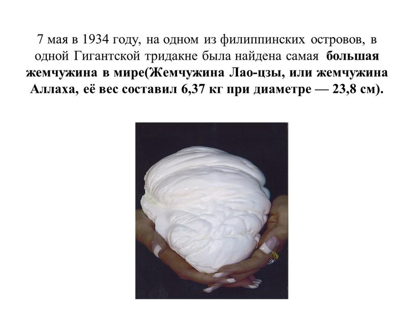 Гигантской тридакне была найдена самая большая жемчужина в мире(Жемчужина