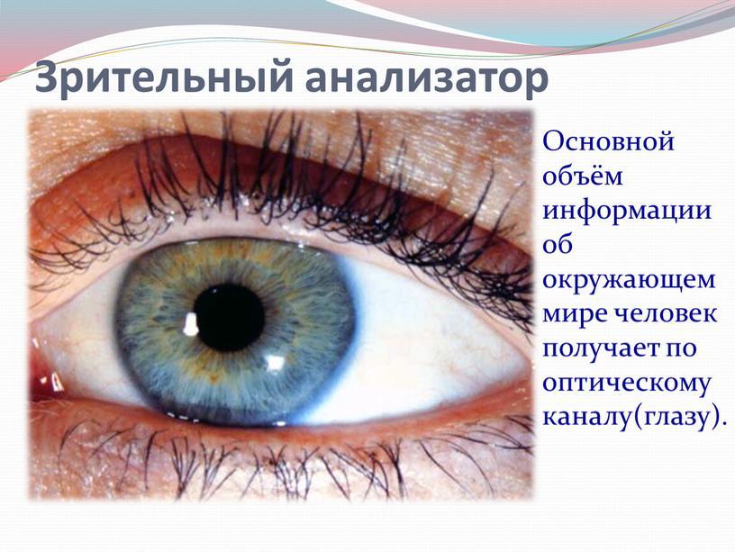 Основной объём информации об окружающем мире человек получает по оптическому каналу(глазу)