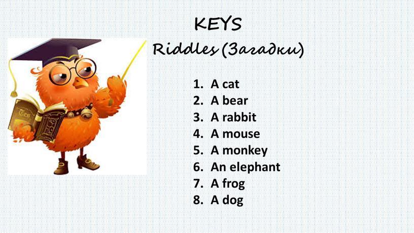 A cat A bear A rabbit A mouse A monkey
