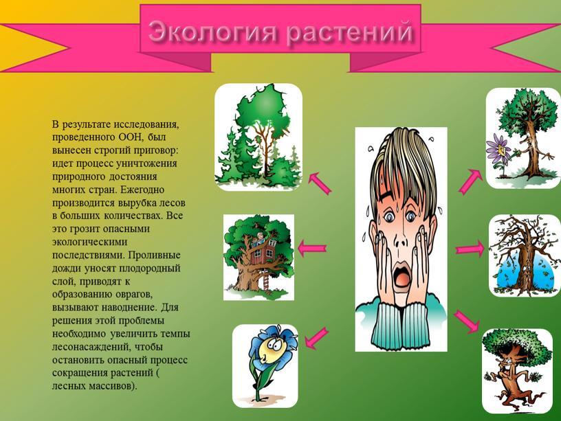 Экология растений В результате исследования, проведенного