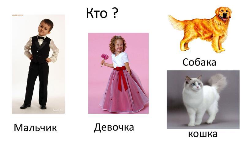Кто ? Мальчик Девочка Собака кошка