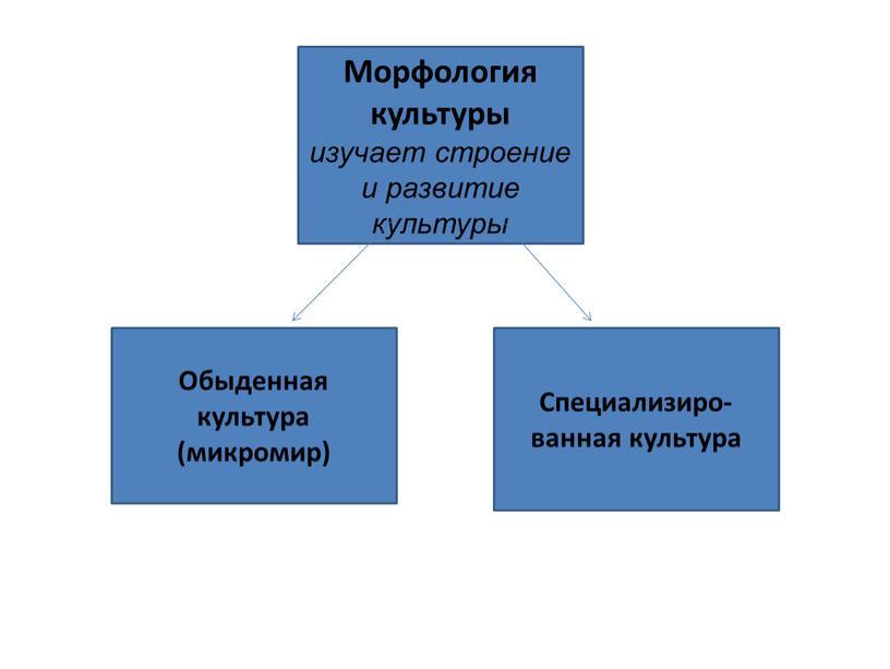 Морфология культуры изучает строение и развитие культуры