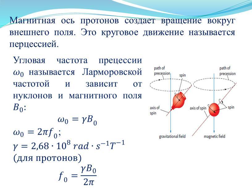 Магнитная ось протонов создает вращение вокруг внешнего поля