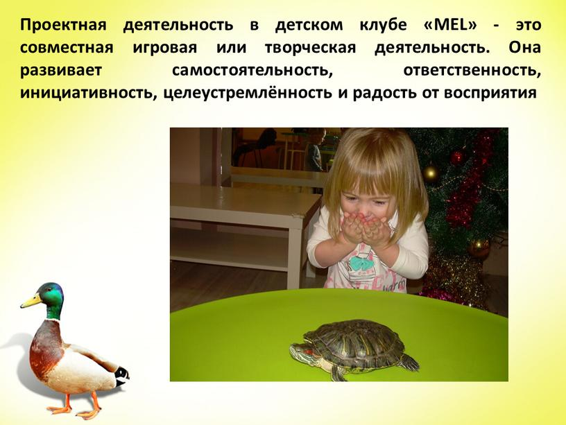 Проектная деятельность в детском клубе «MEL» - это совместная игровая или творческая деятельность
