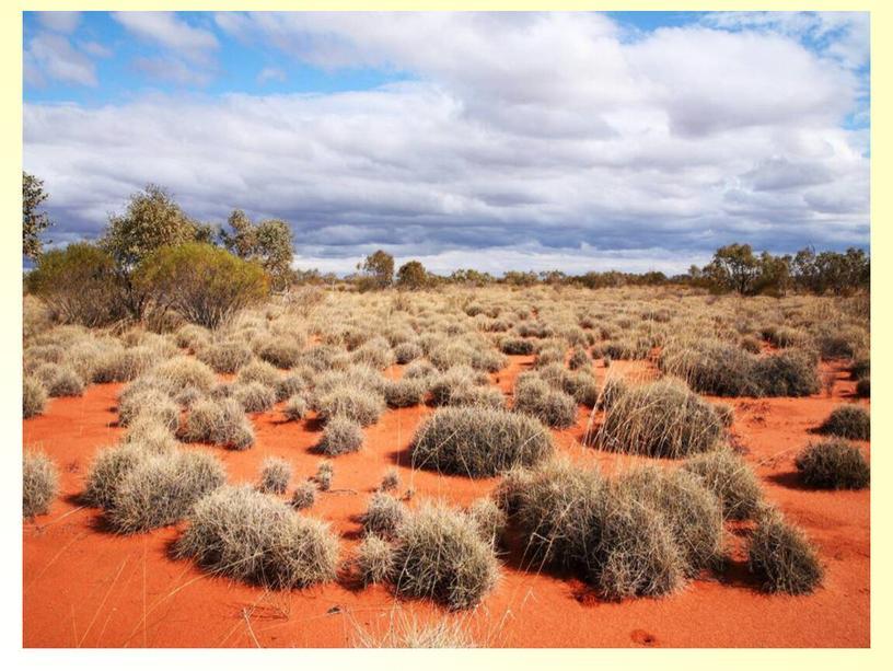 """Презентация к уроку """"Путешествие по Австралии"""" - 5 класс"""
