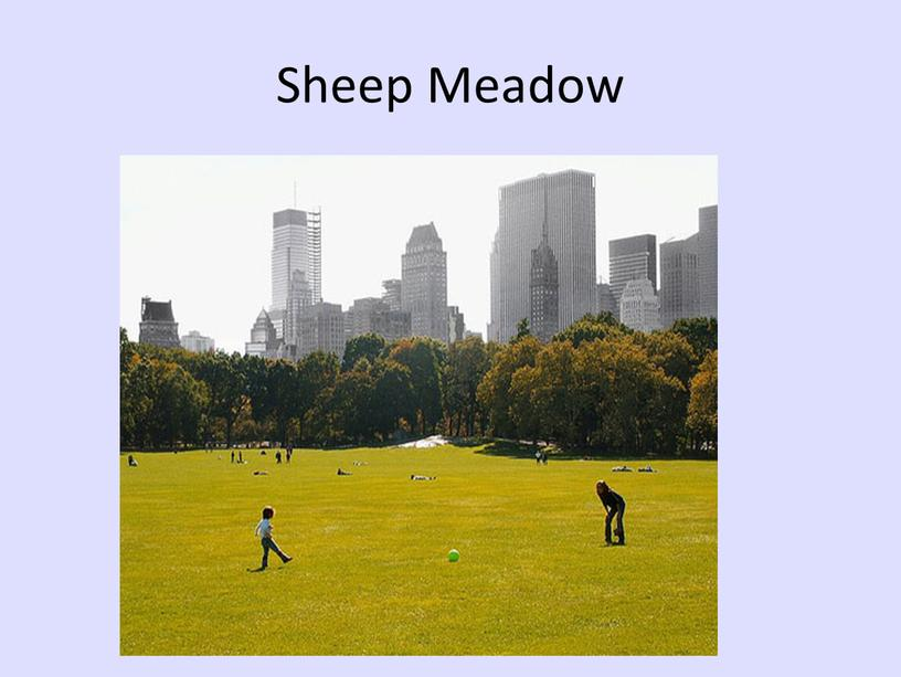 Sheep Meadow