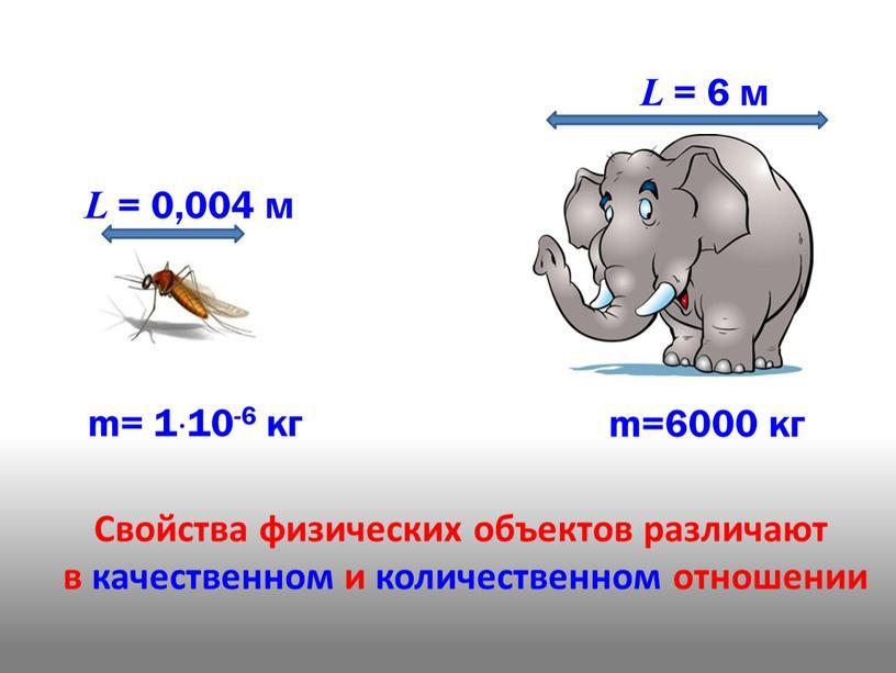 L = 0,004 м L = 6 м Свойства физических объектов различают в качественном и количественном отношении