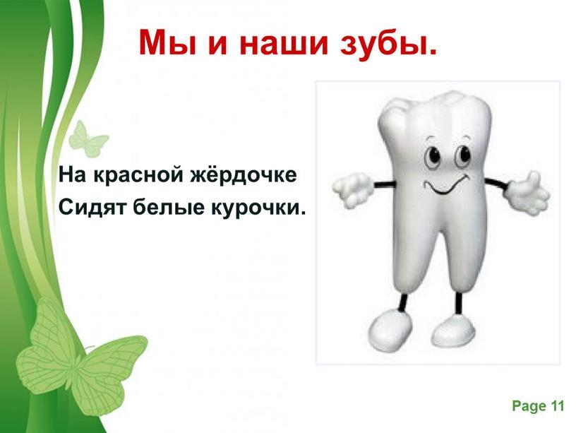 Мы и наши зубы. На красной жёрдочке