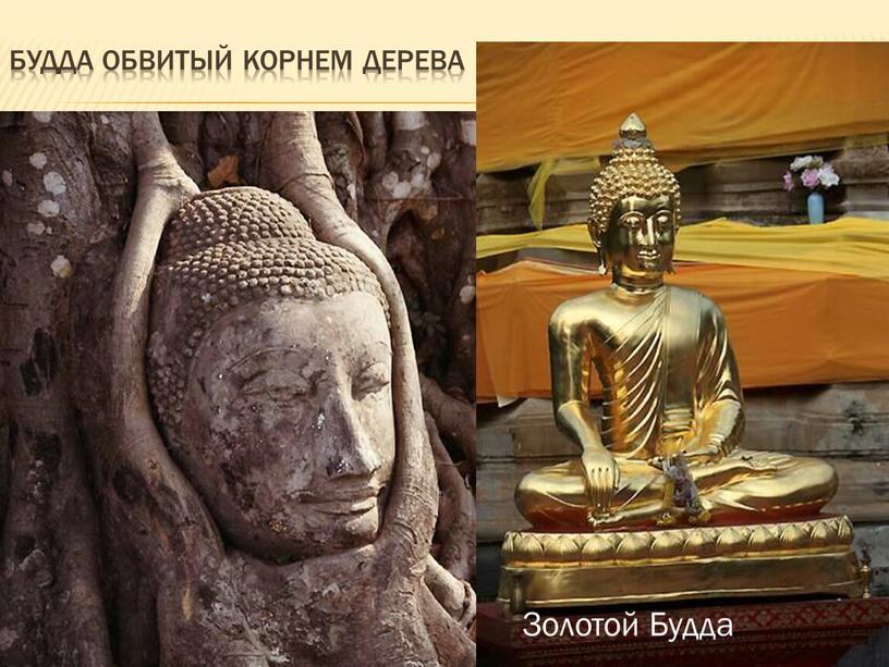 Будда обвитый корнем дерева Золотой