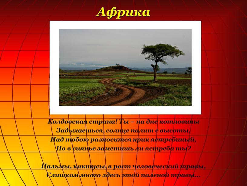 Африка Колдовская страна! Ты – на дне котловины