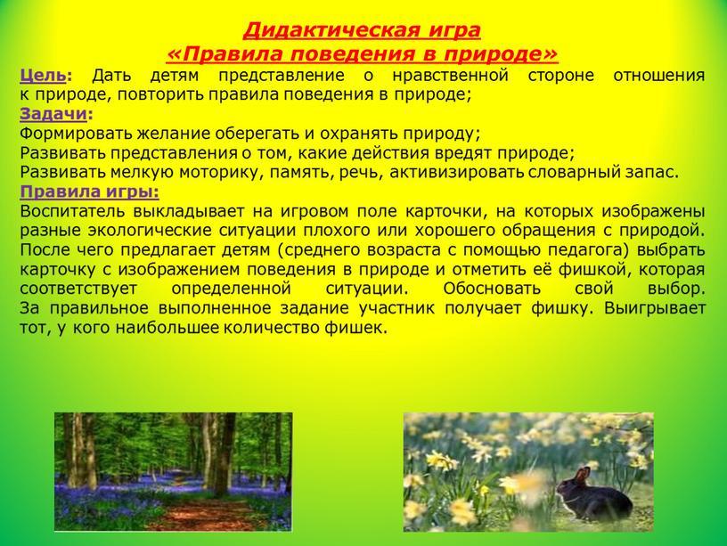 Дидактическая игра «Правила поведения в природе»