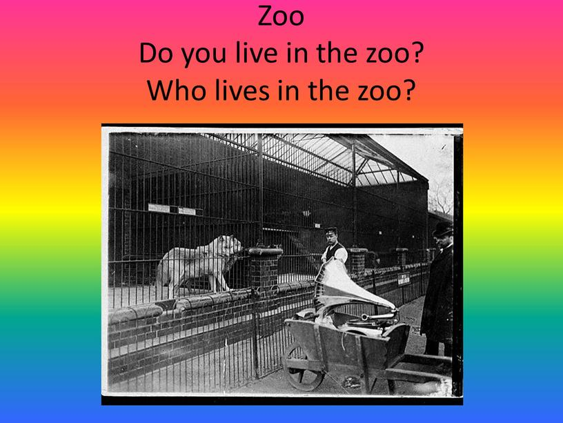 Zoo Do you live in the zoo? Who lives in the zoo?