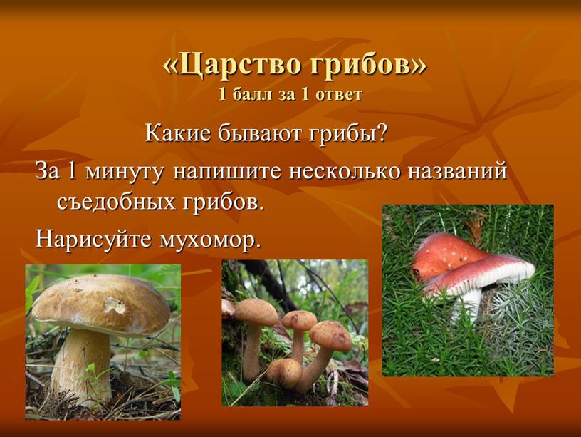 Царство грибов» 1 балл за 1 ответ