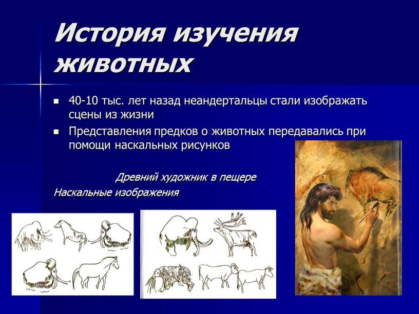 История изучения животных 40-10 тыс
