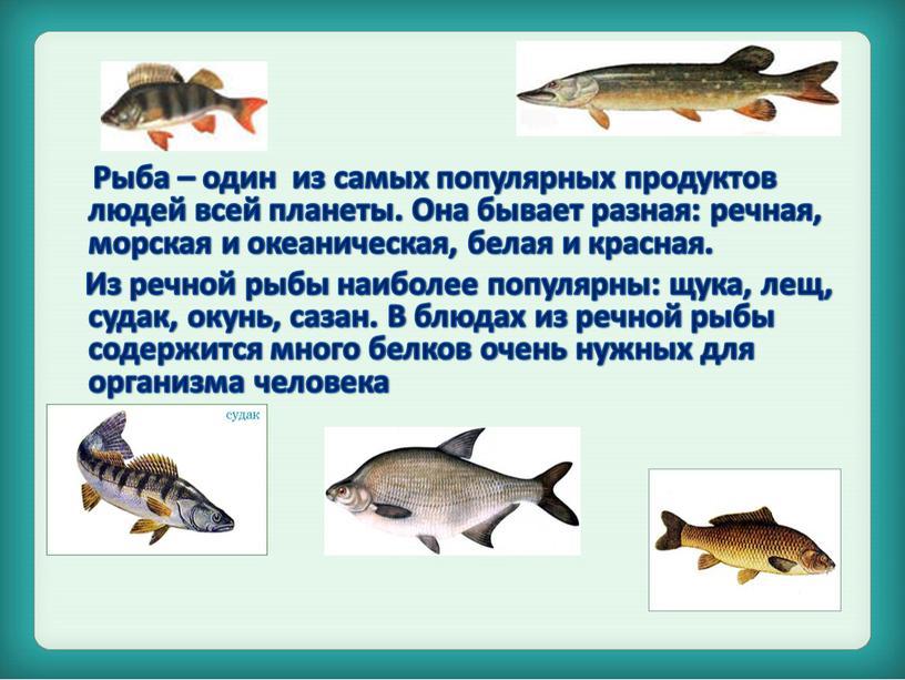 Рыба – один из самых популярных продуктов людей всей планеты