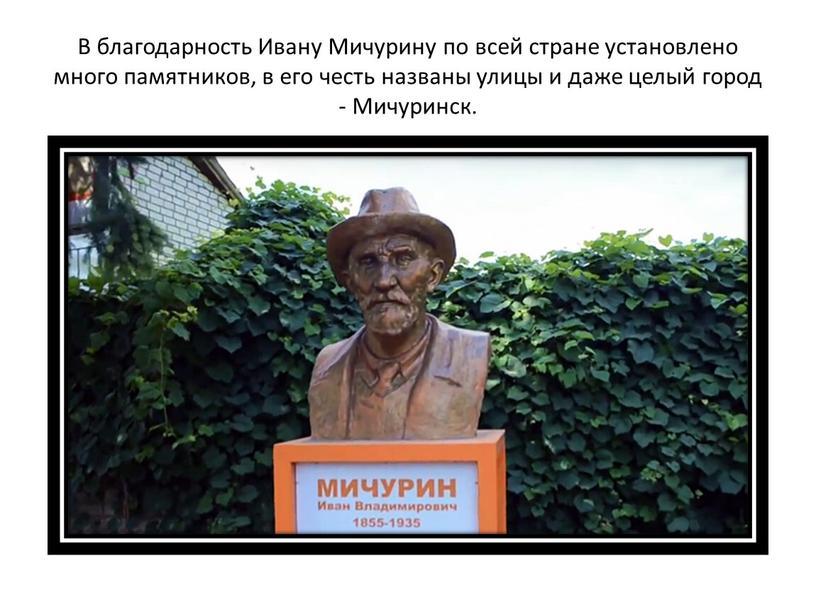 В благодарность Ивану Мичурину по всей стране установлено много памятников, в его честь названы улицы и даже целый город -